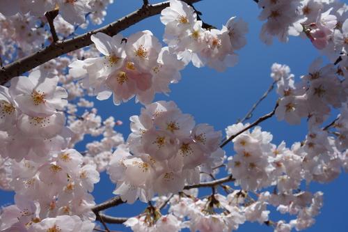 2014-04-05 09.35.12.jpg