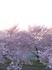 2014-04-11 16.55.47.jpg